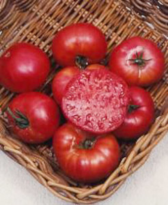 Tomato Mortgage Lifter